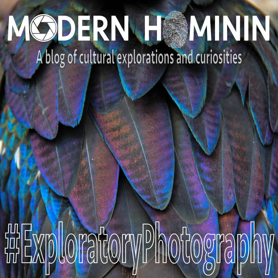 ExploratoryPhotography4-22-17-01